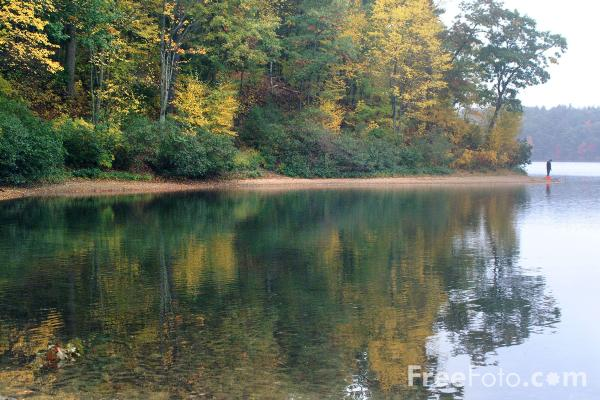 Fall Lake Wallpaper Walden Pond Massachusetts Pictures Free Use Image 1212