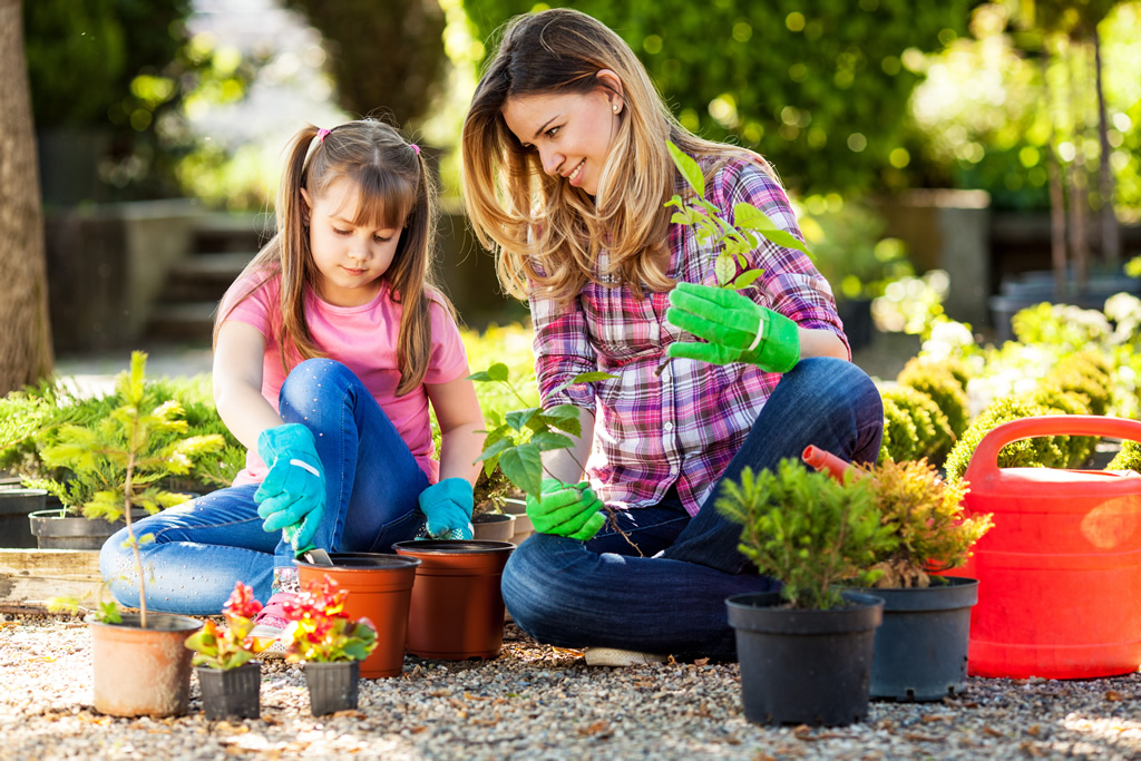 Are You Stressed? The Therapy Of Vegetable Garden