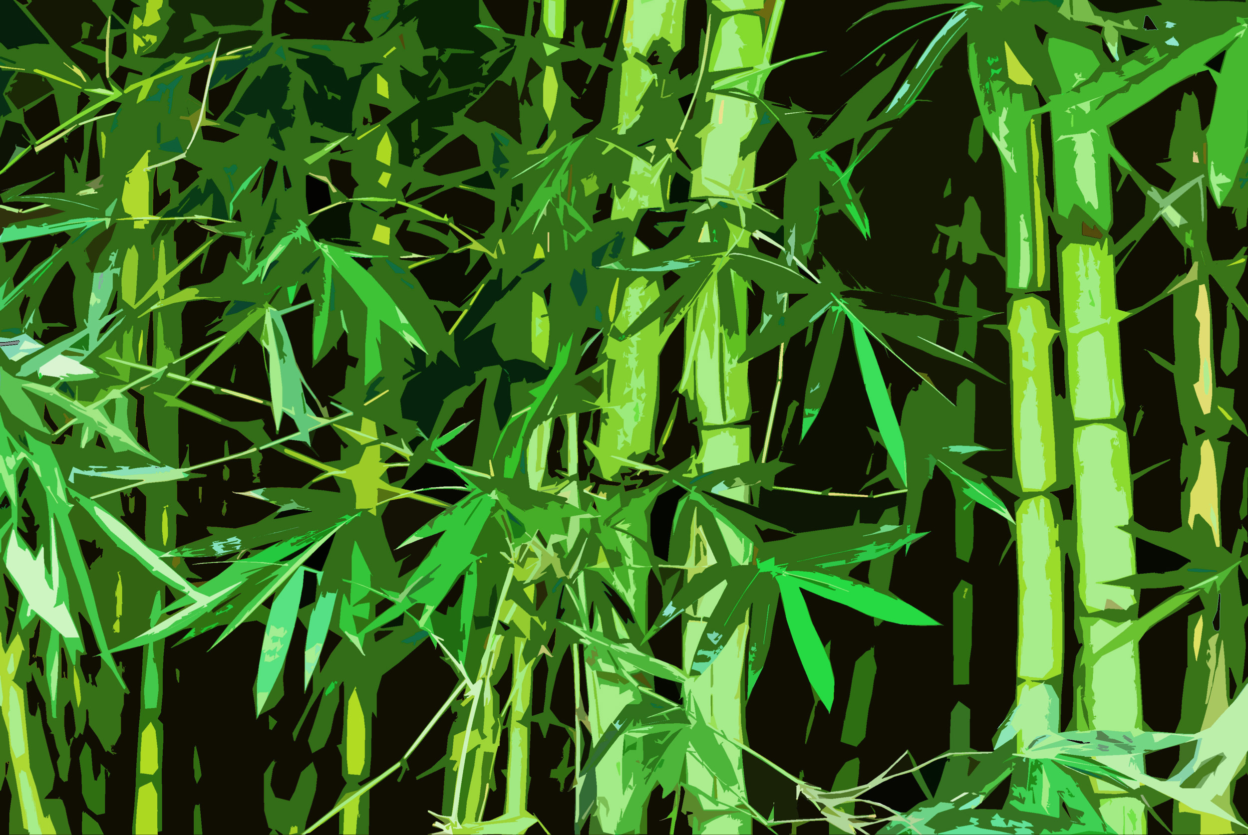 Wallpaper Black Green Free Stock Photo 3003 Graphic Bamboo Freeimageslive