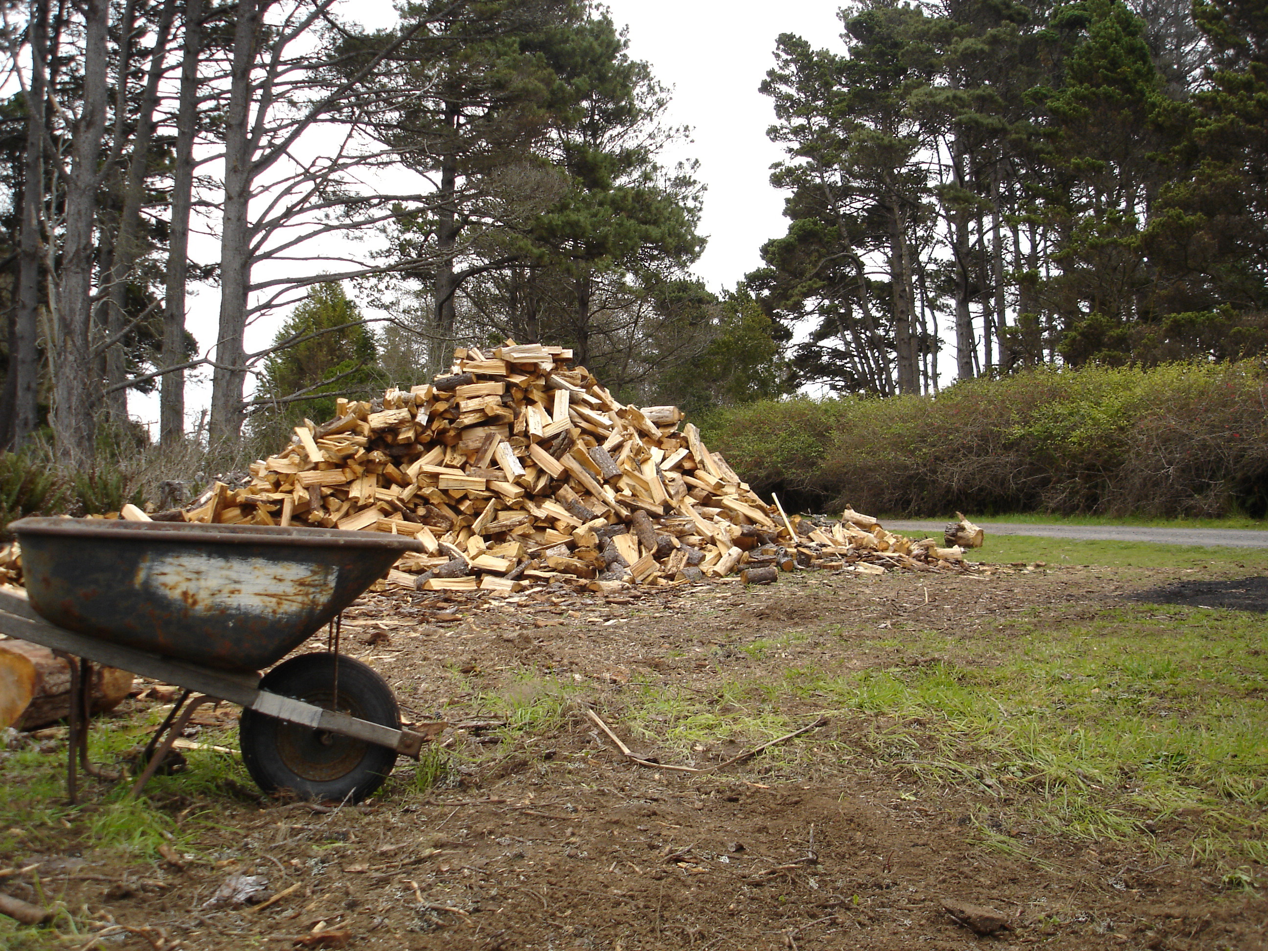 Free Stock Photo 5793 Wood Pile Freeimageslive