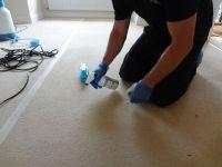 Premium Carpet Care, Stevenage   Carpet Cleaning Company ...