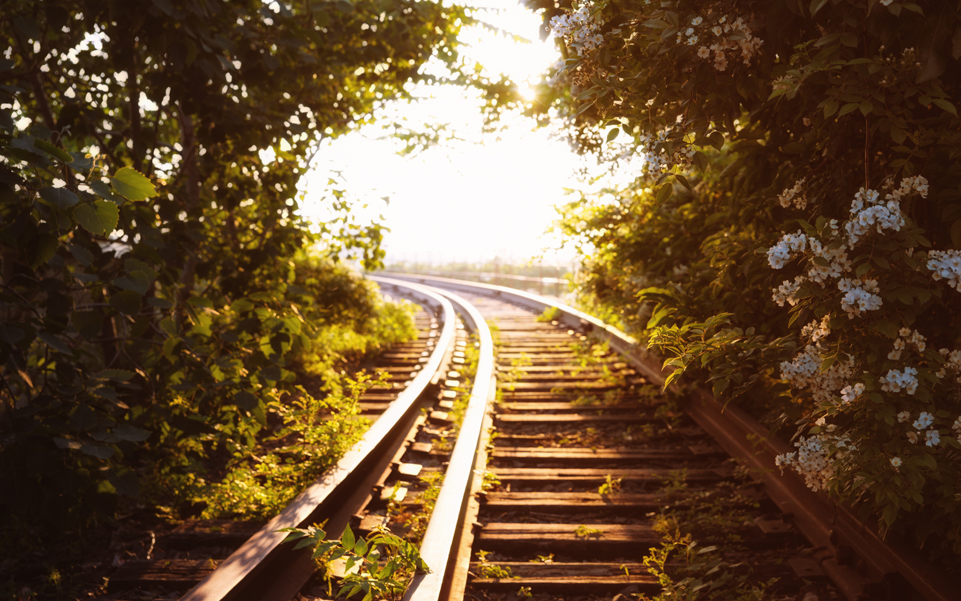 Fall Cell Phone Wallpaper 40 Relaxing Railroad Track Wallpapers