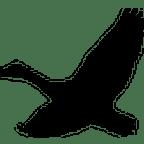 FM goose logo 144x144