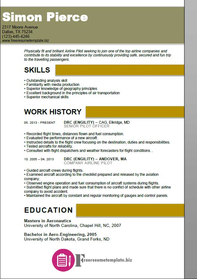 Aircraft Pilot Resume Sample Aviation Structural Mechanic Examples