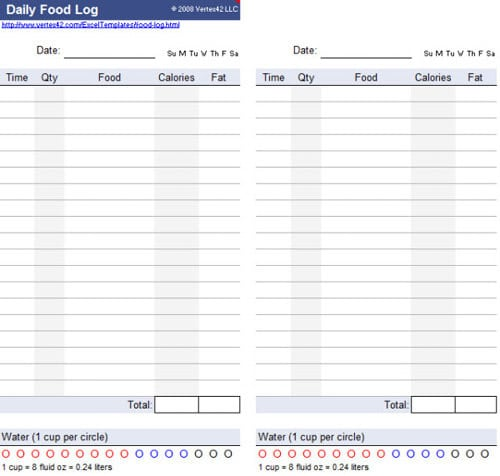 Daily Delivery Log Template