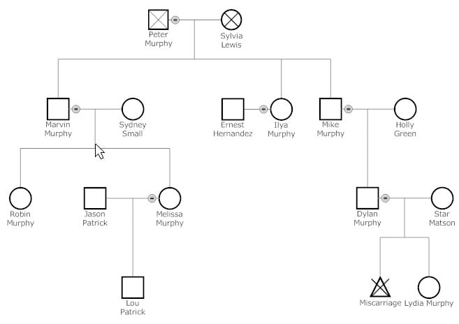 6 Genogram Templates - formats, Examples in Word Excel - genogram template