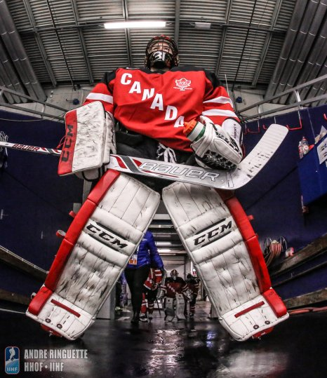 MALMO, SWEDEN - MARCH 31: Canada vs Finland preliminary round - 2015 IIHF Ice Hockey Women's World Championship. (Photo by Andre Ringuette/HHOF-IIHF Images)