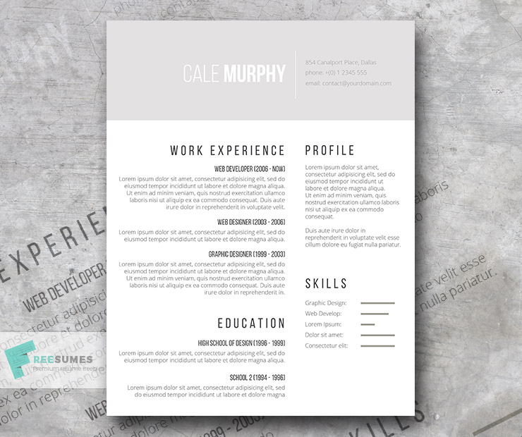 Free Minimalist CV Template - Shades of Gray - Freesumes