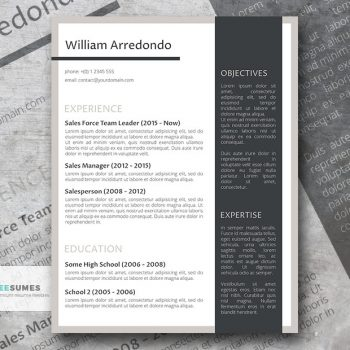 Professional Resume Templates, Ideal for a White-Collar Job - Freesumes