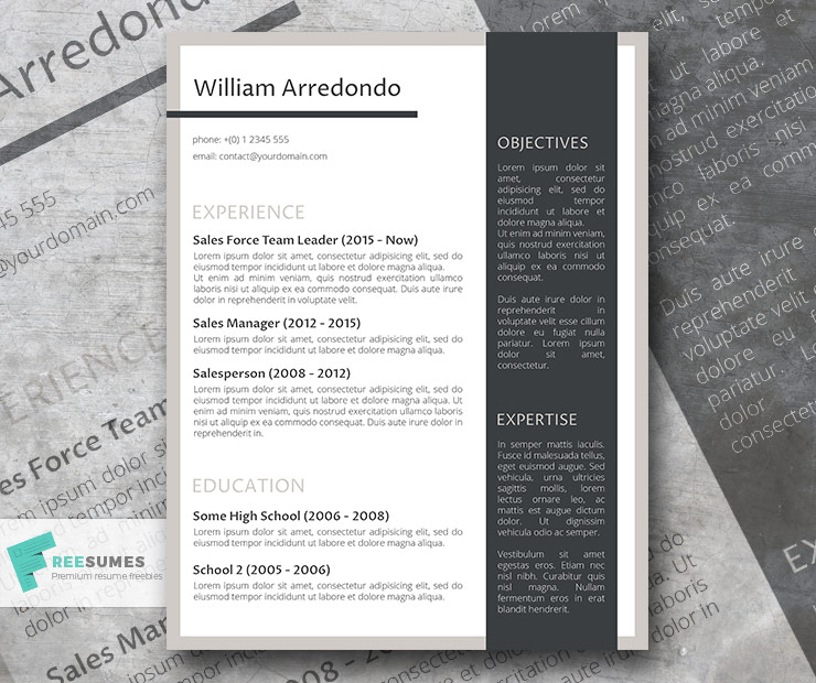 The Efficient Layout Resume Template Freebie - Freesumes