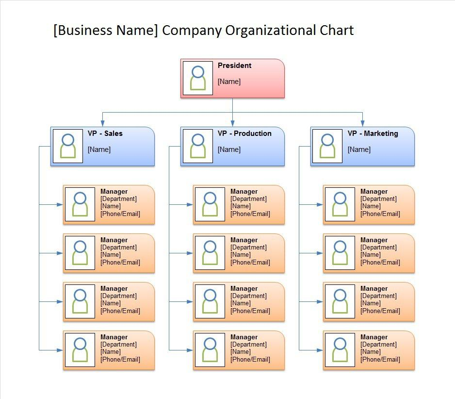 40 Free Organizational Chart Templates (Word, Excel, PowerPoint - business organizational chart