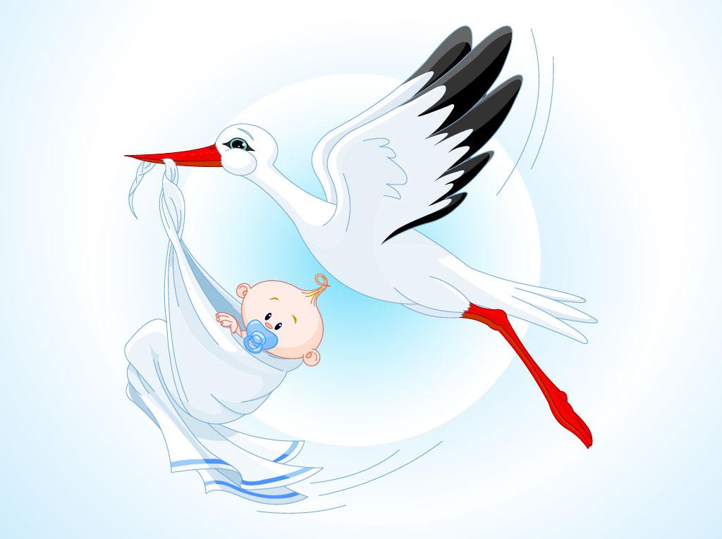 Stork Baby Cartoon Vector Art  Graphics freevector