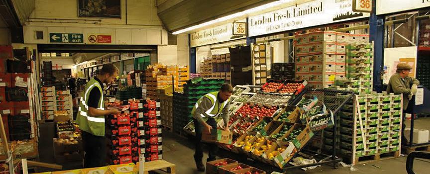 French Garden Ltd/ London Fresh/ What We Do