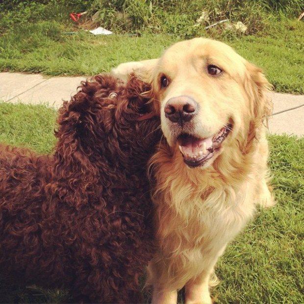 Kabir et son ami
