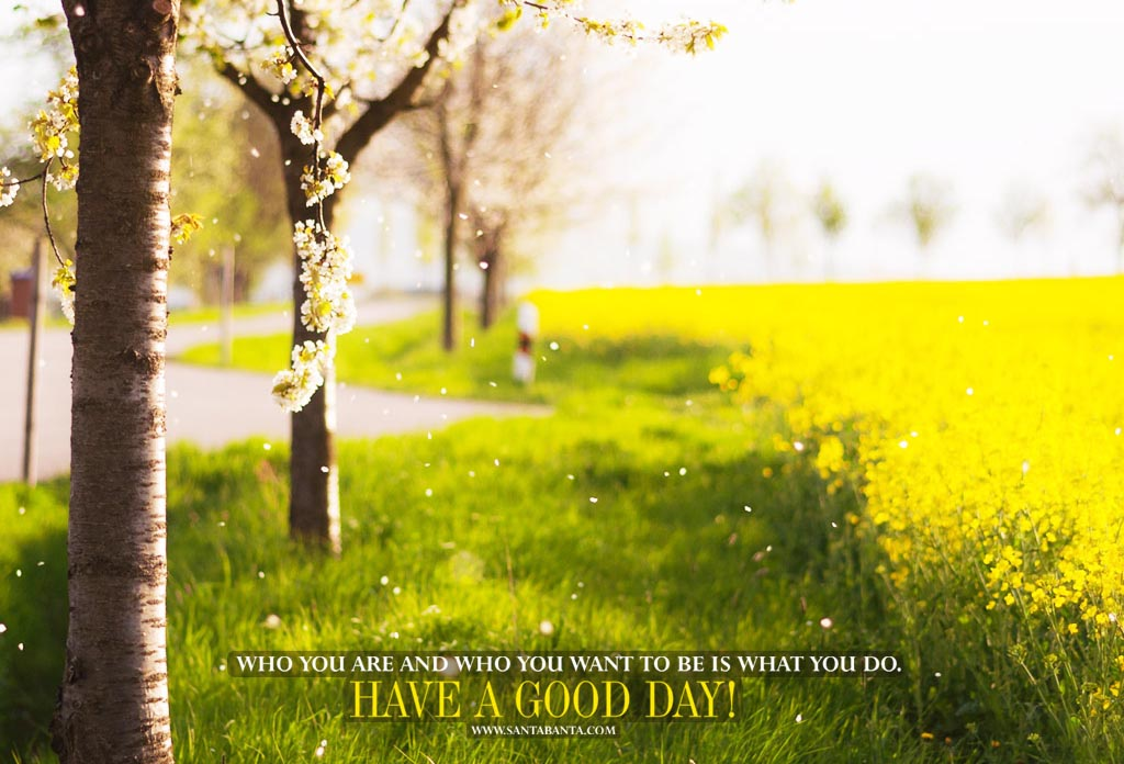 Time Wallpaper Quotes 60 Beautiful Good Morning Have A Nice Day Images