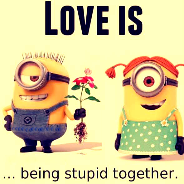 Cute Wallpapers With Quotes For Whatsapp The Cutest Minion Dp For Whatsapp And Facebook