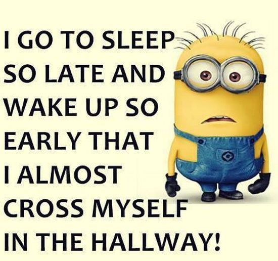 Cute Wallpapers With Quotes Hindi 60 Funny Minion Quotes With Pictures Freshmorningquotes