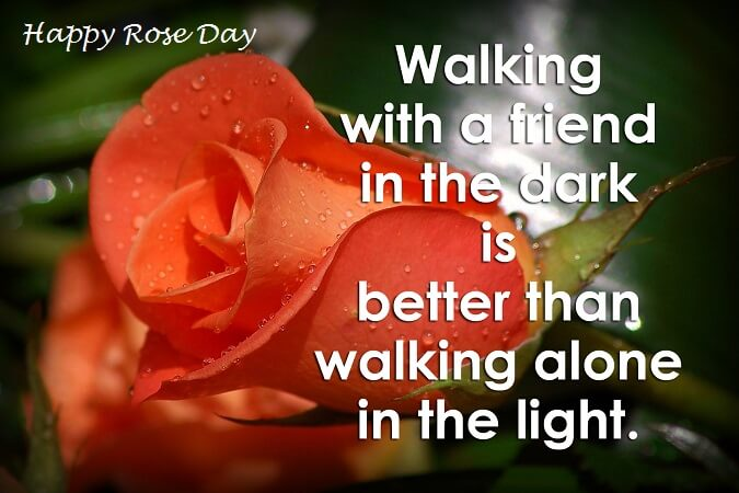 Free Download Wallpapers Of Friendship Quotes Rose Day 2019 Quotes Sayings And Images Freshmorningquotes