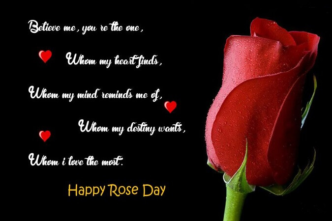 Falling In Love Quotes Wallpapers Rose Day 2018 Quotes Sayings And Images Freshmorningquotes
