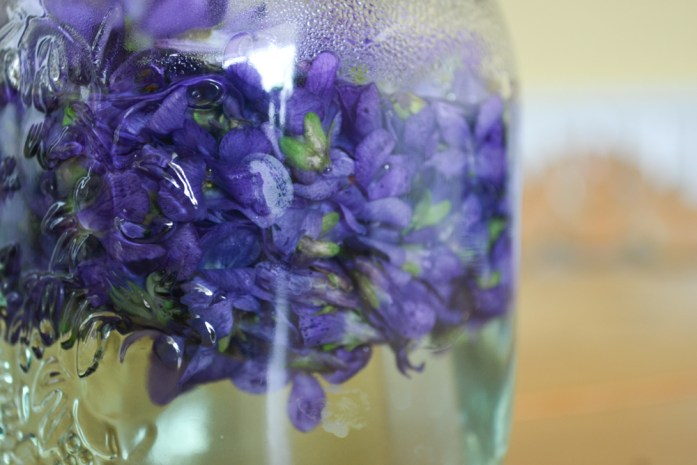 steeping violet tea