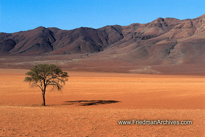 3d Hd Scenery Wallpapers The Friedman Archives Stock Photo Images By Gary L Friedman