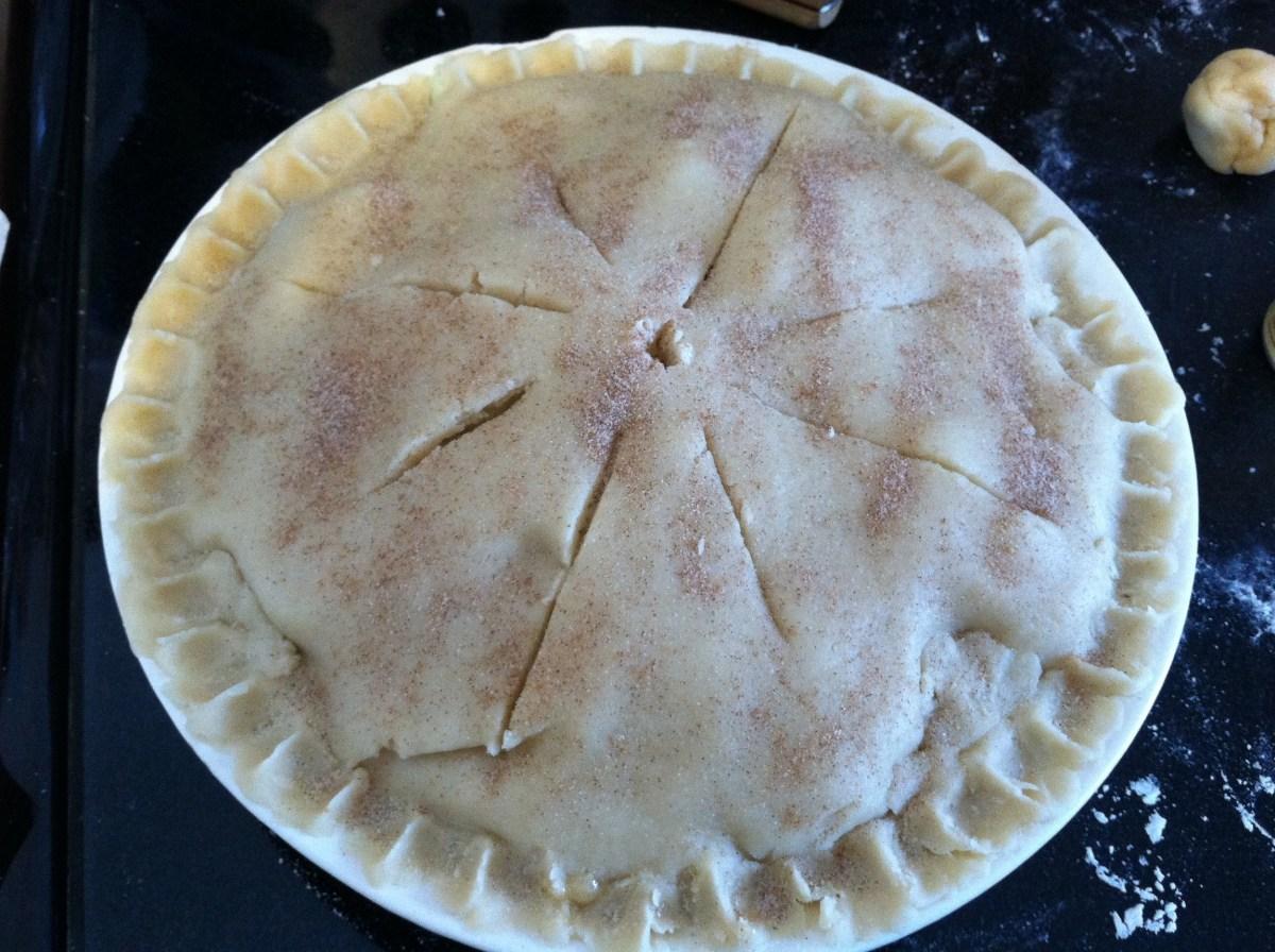 Amish Friendship Bread Pie Crust