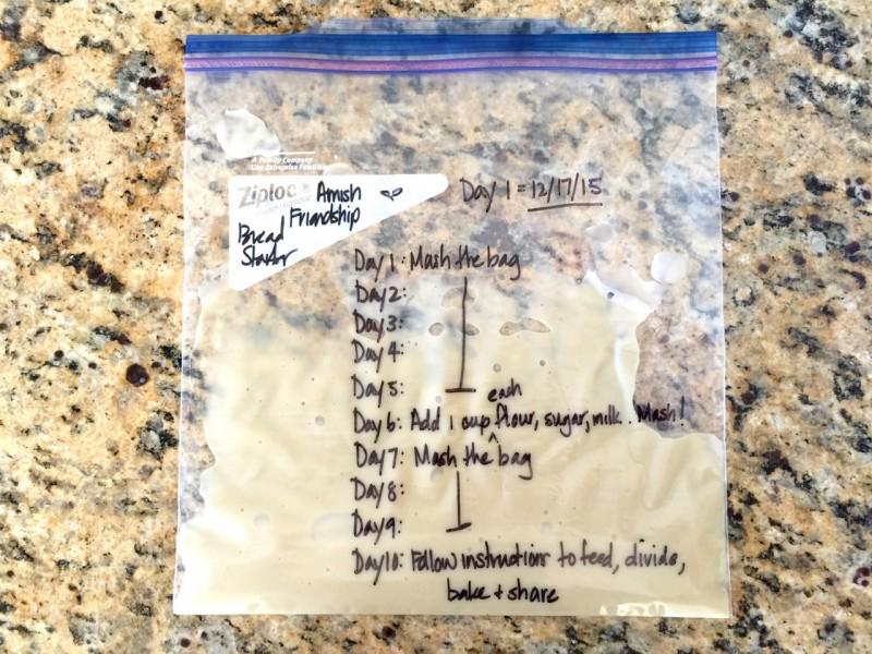 Amish Friendship Bread Starter Day 10 ♥ friendshipbreadkitchen.com