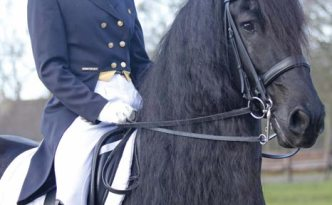 Hedser ridden by Laura Zwart at Grand Prix level in NL. Photo: Marga de Wolff.