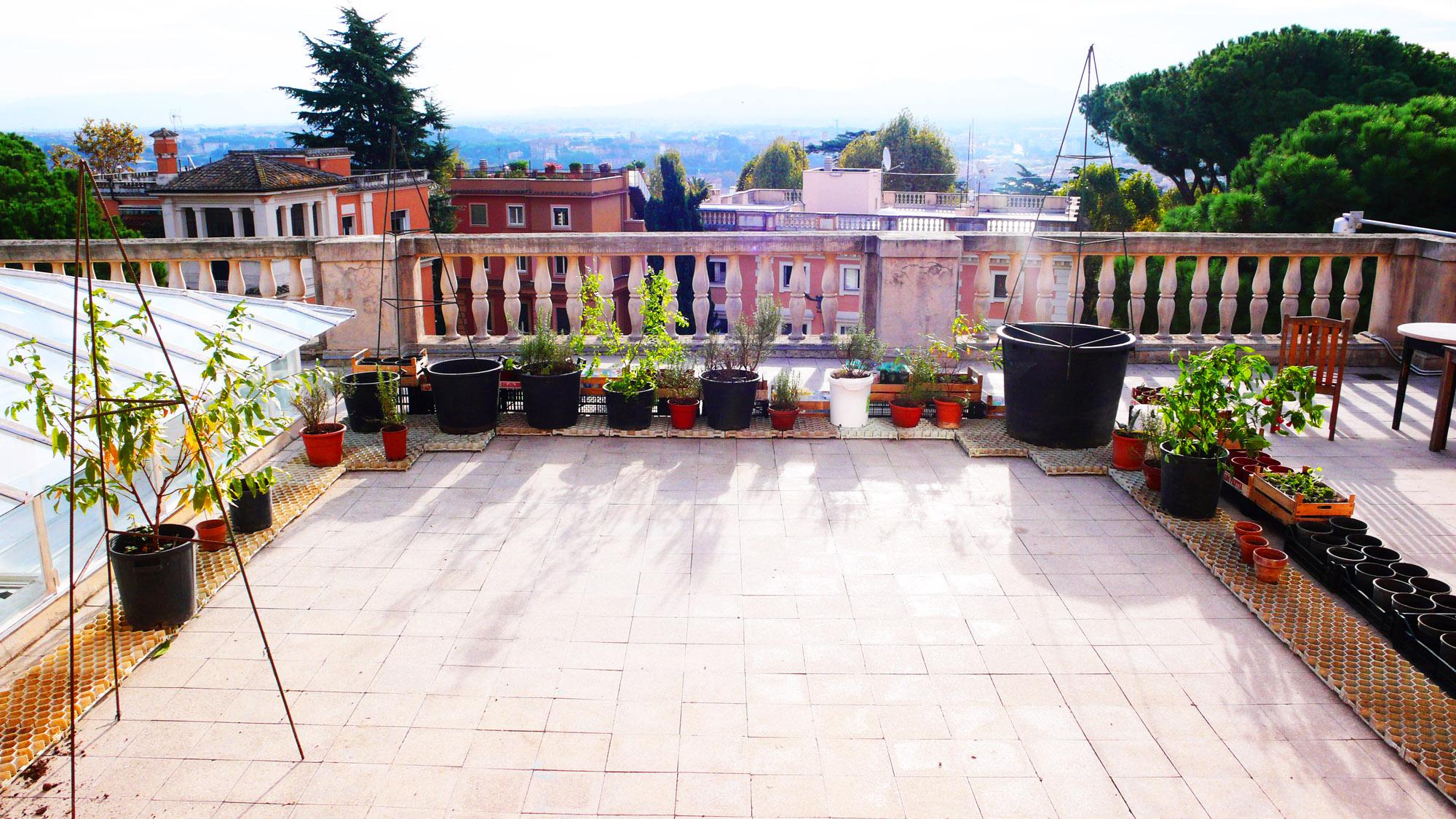 Garden Rooftop Edible Estate #12: Budapest / image