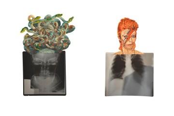 Medusa - David Bowie © Mattew Cox