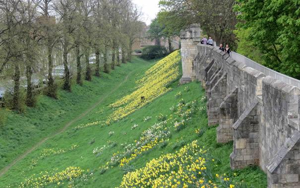 Muralla de York