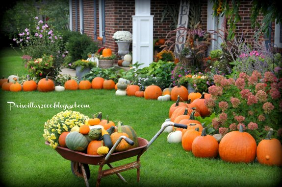 Fall Scenes Wallpaper With Pumpkins Pumpkin Decorating Ideas For Your Autumn Decorating