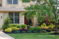 Lewis Center Ohio | Front Yard Landscaping | Front Porch ...