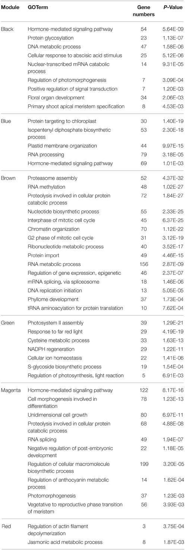 Frontiers Exploring potential new floral organ morphogenesis genes