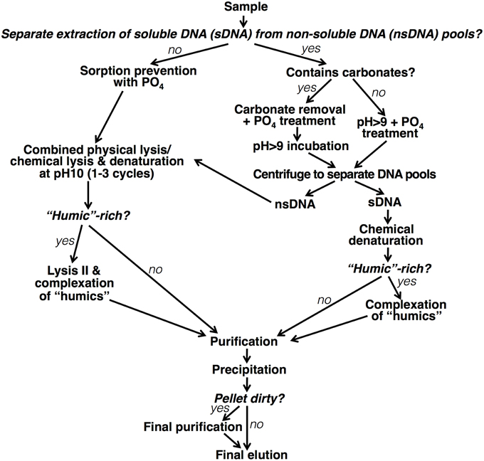 Frontiers A modular method for the extraction of DNA and RNA, and