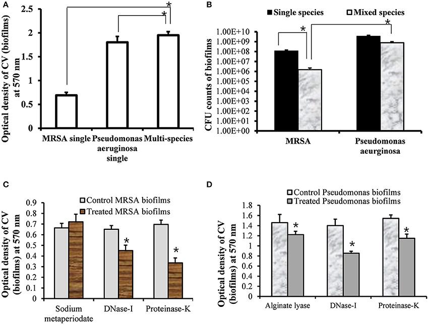 Frontiers In vitro Multi-Species Biofilms of Methicillin-Resistant