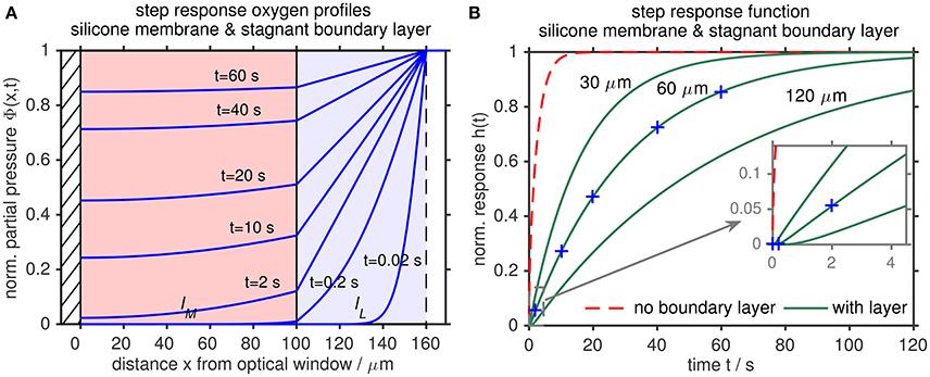 Frontiers Oxygen Optode Sensors Principle, Characterization