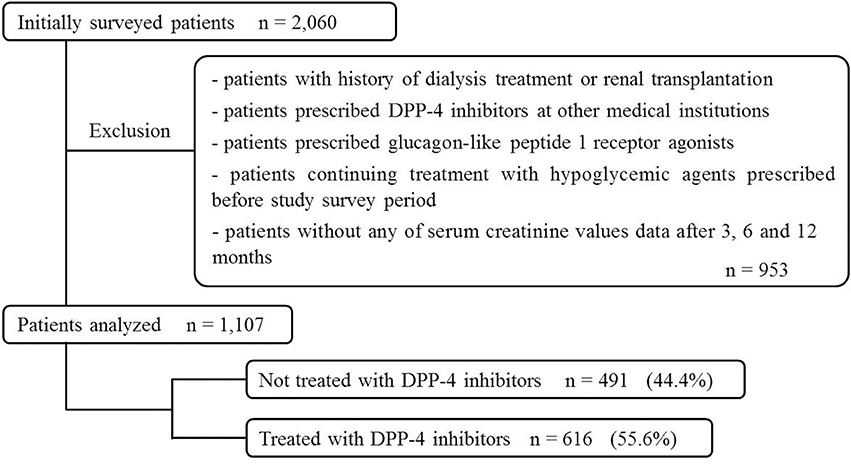 Frontiers Renoprotective Effect of Dipeptidyl Peptidase-4