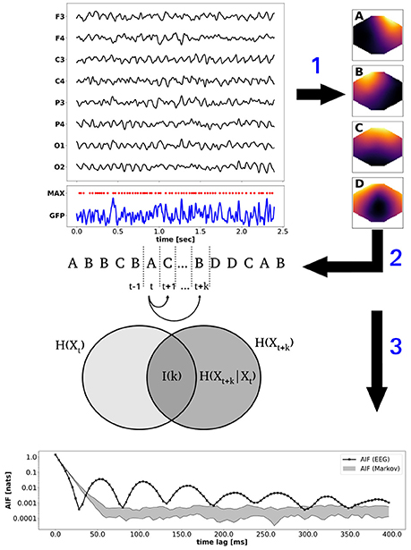 Frontiers Information-Theoretical Analysis of EEG Microstate