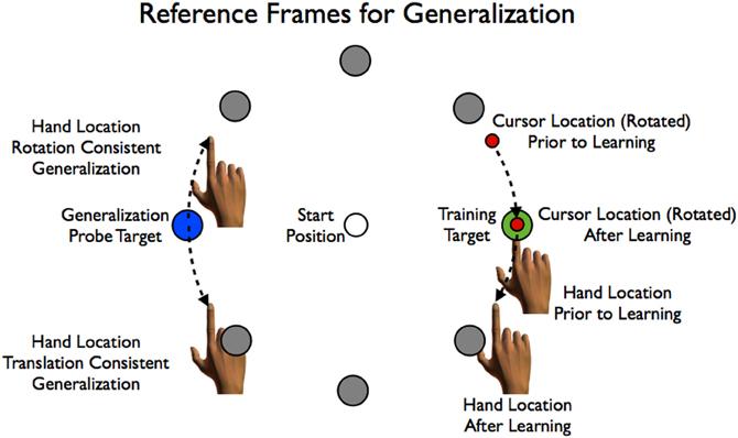 Frontiers Context-dependent generalization Frontiers in Human