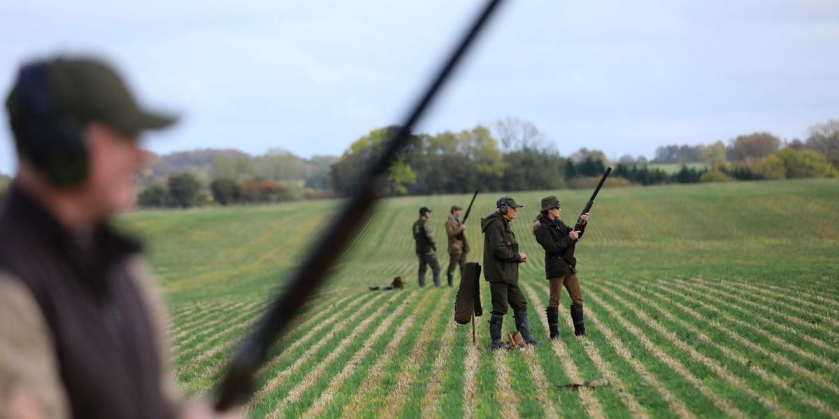 Denmark Shooting Bird Hunting Frontiers Travel