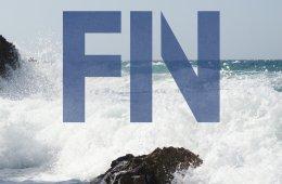Fin_Salt
