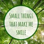 Small things that make me smile {July 2016}….