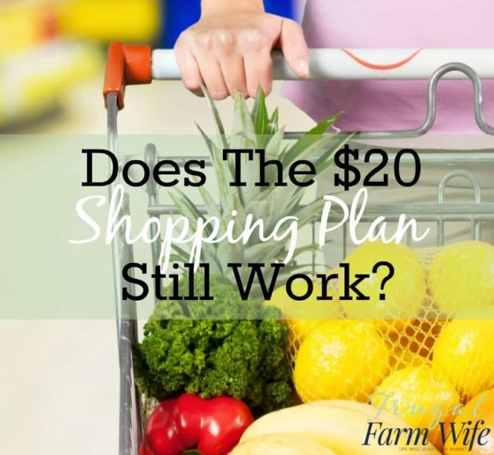 A Healthy Diet For $2000 A Week The Frugal Farm Wife