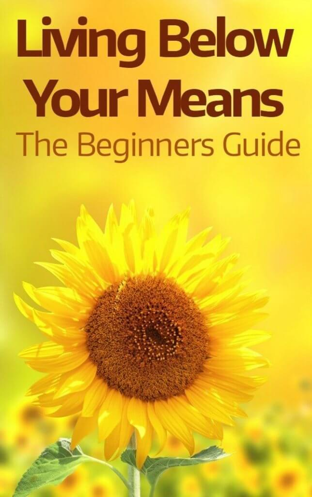 Living Below Your Means The Complete Beginners Guide - financial calculator