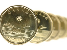 loonie, canadian dollar.  DREAMSTIME