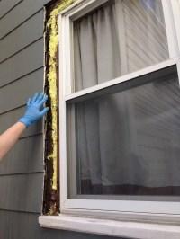 Exterior Home Windows | Design Ideas