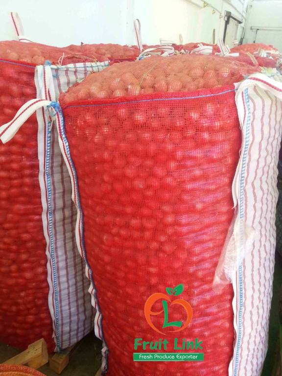 Red Onions, 1250 kg, Jumbo bag   FruitLink