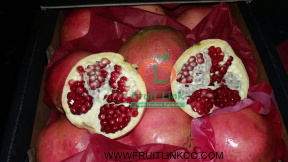 Egyptian Pomegranates early 116 by Fruit Link (7)