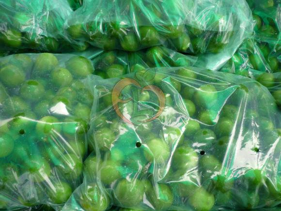 Egyptian Lime Pack | Citrus 2018 | Fruit Link